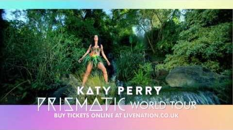 Katy Perry - The Prismatic World Tour-1385570688