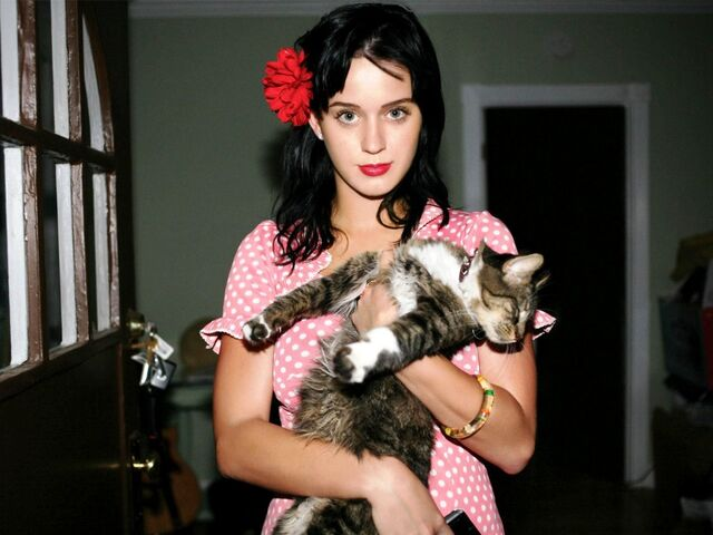 File:Katy perry and kitty purry.jpg
