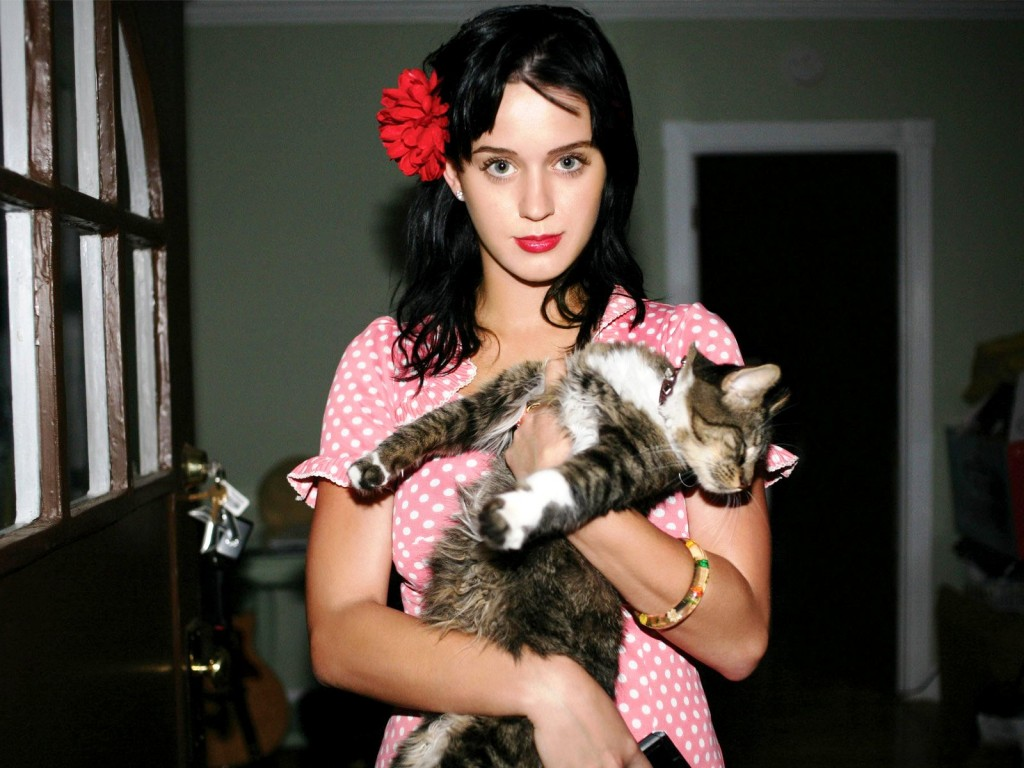 Katy perry and kitty purry