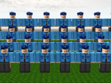 The Police Force