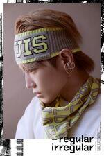 Taeyong (Regular-Irregular) 2