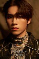 Xiao Jun (Regular)