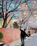 Yangyang April 4, 2020 (3)