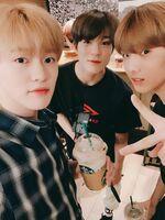 Chenle, Jeno & Jisung Jan 18, 2019