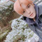 Taeyong Feb 15, 2019 (2)
