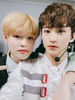 Chenle & Mark Jan 28, 2019