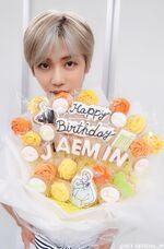 Jaemin (Birthday 2019) 2