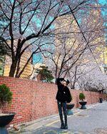 Yangyang April 4, 2020 (2)