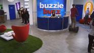 Buzzie Buzz