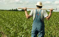 File:Farmer2