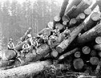 File:Woodcutter