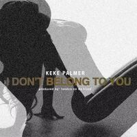 I Don't Belong To You Remix