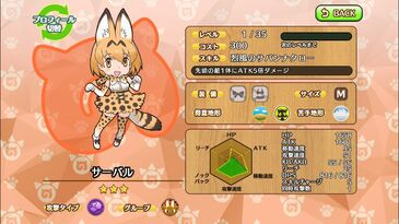 G148 Serval Cat a