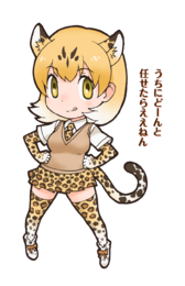 034 - Leopard