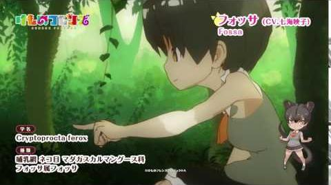 TVアニメ『けものフレンズ』ショートムービー フォッサ篇