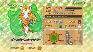 G144 Golden Tabby Tiger a