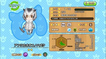 G010 Northern White-faced Owl a