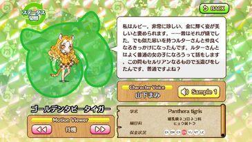 G144 Golden Tabby Tiger b