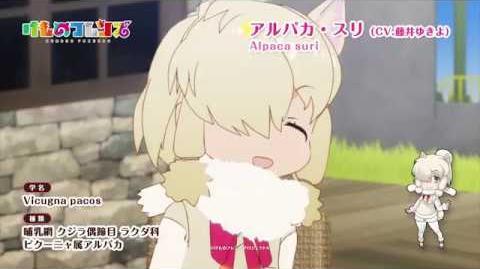 TVアニメ『けものフレンズ』ショートムービー アルパカ・スリ篇