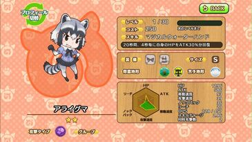 G022 Common Raccoon a