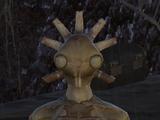 Hive Queen