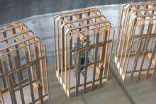 Заключённый Ану