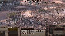 Cult Village Slave Fields 1