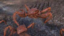 Crabinator