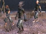 Flotsam Ninjas