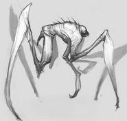 Fauna9