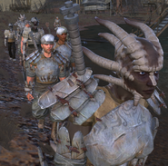 Mercenary Guild 3