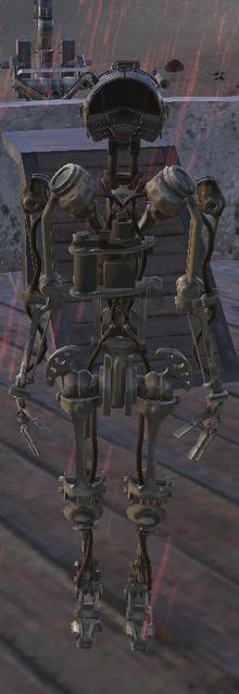 Skeleton-LogHead