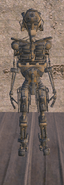 Скелет (субраса)