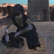 Thief Watchtower 6
