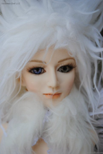 Goodreau Tea Party dolls (29)