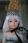 Goodreau Tea Party dolls (10)
