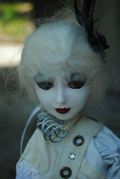 Goodreau Tea Party dolls (27)