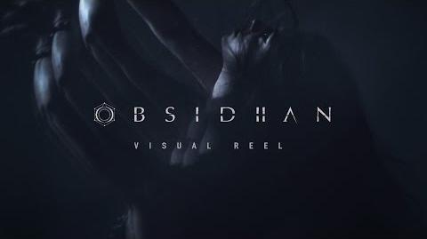 OBSIDIIAN Collective Visual Reel 2017