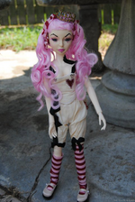 Goodreau Tea Party dolls (18)