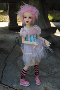 Goodreau Tea Party dolls (24)