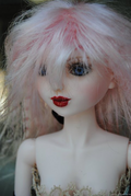 Goodreau Tea Party dolls (36)