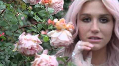 Zedd & Kesha - True Colors (Teaser)