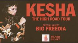 Kesha - High Road Tour Announce