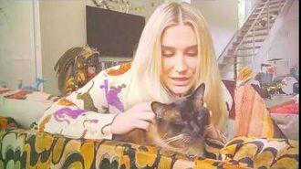 KESHA - CAT DREAMS