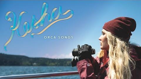 Kesha Orca Songs