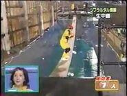 BridgeBallTBS2005