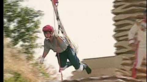 Sling Swing Fling