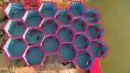 HoneycombMazeThailand2