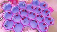 HoneycombMazeThailand4