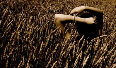 Shoulder wheat